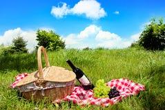picknick Arkivbilder
