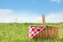 picknick Arkivfoto