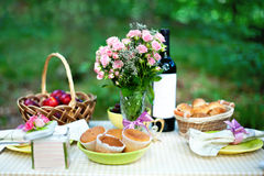Picknick Royaltyfria Bilder
