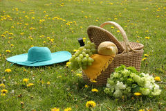 Picknick Stockbild