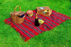Picknick auf dem Rasen Lizenzfreie Stockbilder