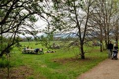 Picknick bij het park stock foto