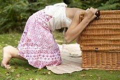 Picknick, das Korb untersucht Stockfotos