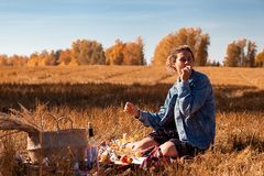 Picknick in der Frischluft stockbild
