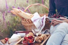 Picknick in der Wiese Stockfotografie