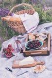 Picknick in der Wiese Stockbild