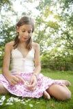 Picknick die Bloemblaadjes trekt Stock Foto