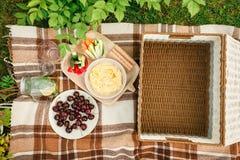 Picknick draußen im Park auf dem Grasweidenkasten, karierter pl stockfotografie