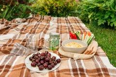 Picknick draußen im Park auf dem Grasweidenkasten, karierter pl stockfotos
