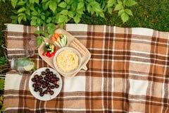 Picknick draußen im Park auf dem Grasweidenkasten, karierter pl stockfoto