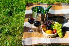picknick in een park met twee glazen rode wijn en fruit Royalty-vrije Stock Fotografie