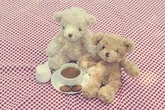 Picknick för två nallebjörnar royaltyfri foto