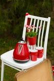 Picknick in het de lentepark Stock Afbeeldingen