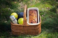 Picknick in het hout stock fotografie