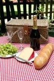 Picknick in het Land stock fotografie