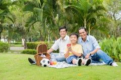 Picknick in het park royalty-vrije stock afbeelding