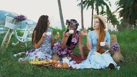 picknick in het platteland Vrouwenvrienden die van picknick genieten, drinkend thee, die aan elkaar spreken stock video