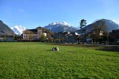 Picknick i Interlaken, Schweiz Royaltyfri Foto
