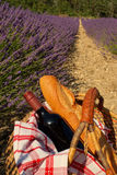 Picknick i lavendelen, Provence, Frankrike Royaltyfria Foton