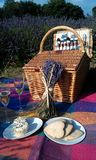 Picknick i lavendelfält Arkivbild