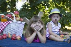 Picknick i natur Arkivfoto