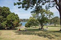 Picknick i Sydney royaltyfri fotografi