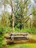 Picknick im Frühjahr Stockfoto