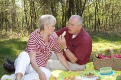 Picknick im Wald lizenzfreies stockbild