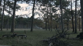 Picknick im Wald stock video footage