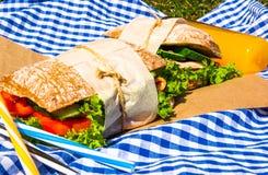 Picknick med hemlagade smörgåsar Arkivfoto