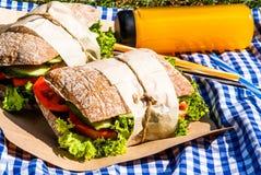 Picknick med hemlagade smörgåsar Arkivbilder