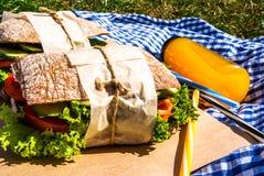 Picknick med hemlagade smörgåsar Royaltyfri Foto