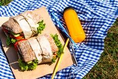 Picknick med hemlagade smörgåsar Arkivbild