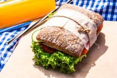 Picknick med hemlagade smörgåsar Royaltyfria Bilder