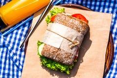Picknick med hemlagade smörgåsar Royaltyfria Foton