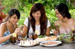 Picknick met vrienden Royalty-vrije Stock Foto