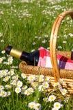 Picknick met wijnstok Stock Afbeeldingen