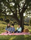 Picknick mit drei Kindern Stockbilder