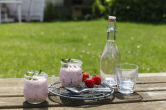 Picknick mit Erdbeerjoghurt und Limonade Royalty Free Stock Photo