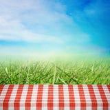 Picknick op aard Stock Foto's