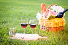 Picknick op het gras Royalty-vrije Stock Fotografie