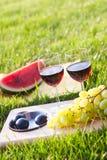 Picknick op het gras Royalty-vrije Stock Afbeeldingen