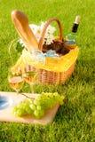 Picknick op het gras Stock Foto