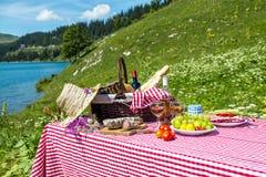 Picknick op het gras Stock Afbeeldingen