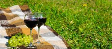 picknick op het gras met twee glazen rode wijn Stock Foto's