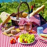 Picknick på gräset Royaltyfri Fotografi