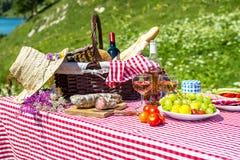 Picknick på gräset Fotografering för Bildbyråer
