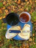Picknick på sidor i skogen royaltyfria bilder