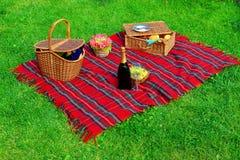Picknick på gräsmattan Royaltyfria Bilder