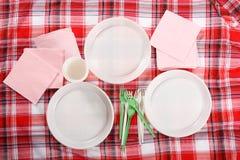 Picknick. platta på tableclothen Arkivbild